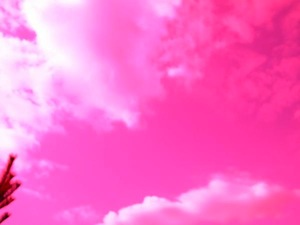If CO2 was pink